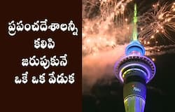 World rings in the NewYear, fireworks display in Diffent countries
