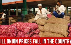 Government offers Imported Onions to States at Rs. 49 to 58 per kg