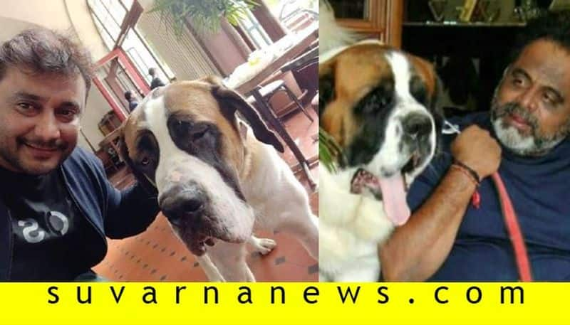 Kannada actor Darshan selfie with  Amabreesh  pet kanwerlal