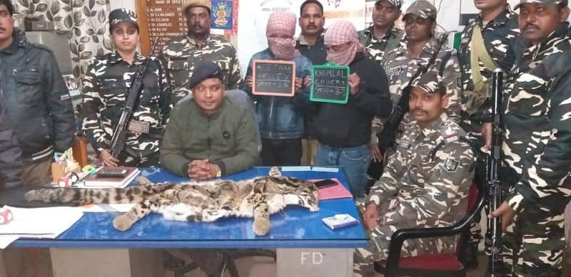 Two Bhutanese citizens arrested with a skin of clouded leopard