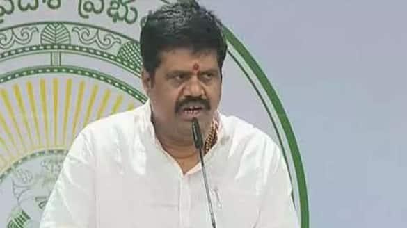 former MLA Palla Srinivasa family grabbing government lands says minister Avanthi Srinivas lns