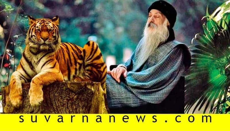 Indian Godman Osho tells a story about a tiger