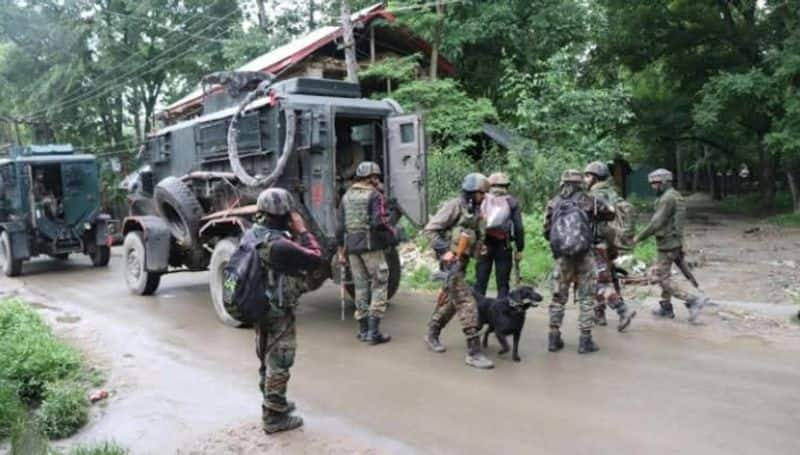 Two successful Lashkar-e-Taiba terrorists killed in Anantnag by security forces
