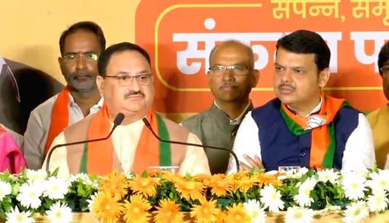 The challenges JP Nadda the new BJP president has at hand