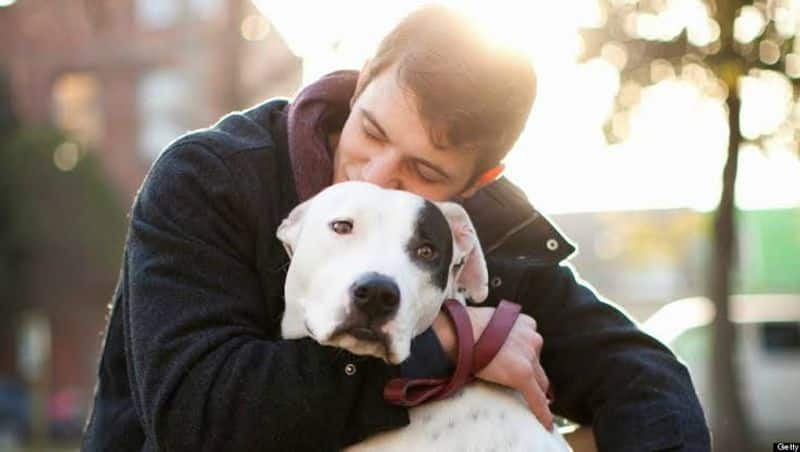 why cant dogs live as long as we humans do? ways to increase the longevity of dogs.