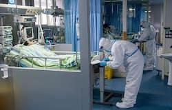 अकेले वुहान शहर में शुक्रवार को 15 लोगों की मौत हुई। वहीं, शुक्रवार को इससे संक्रमित 830 नए मरीज मिले हैं।