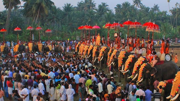 Thrissur pooram 200 people from each subsidiary pooram to be given free vaccines