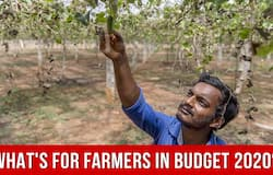 A 16 point plan has been disclosed I budget 2020 to double farmers' income by the year 2022. The Finance Ministerhas allocatedRs. 1.60 lakh crore for Agriculture and Farmers' Welfare and Rs. 1.23 lakh crore towards Rural Development Ministry. Here are 10 highlights of budget 2020 for Agriculture and Farmers' Welfare