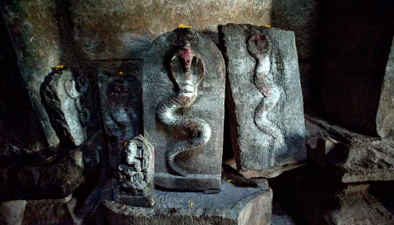 Thirupampuram is the only temple in the country that can remove Kalsarpa Dosh BDD
