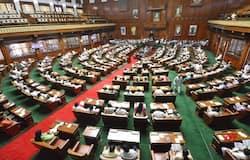 <p>Karnataka Assembly</p>