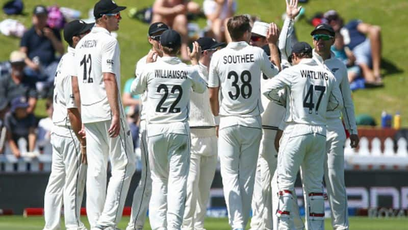scott styris explains why indian fast bowlers could not achieve in first test like new zealand bowlers done