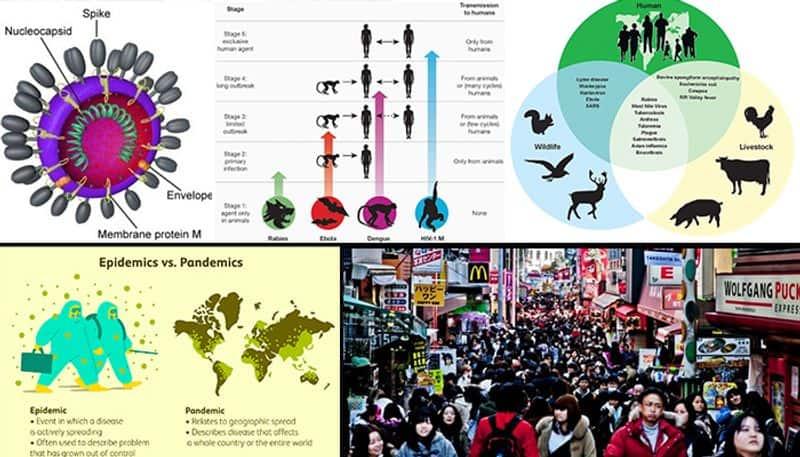 Coronavirus: Population explosion, human animal interface associated with pandemics