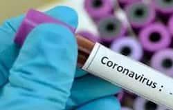 <p><b>corona</b></p>