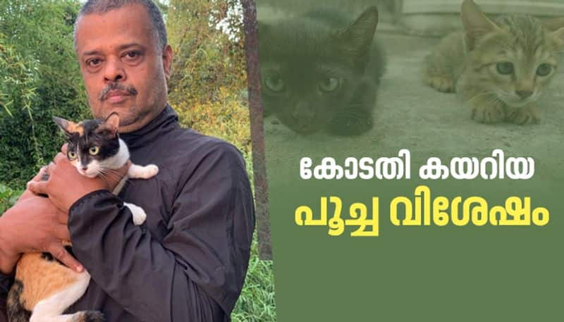 n prakah from maradu who grant permission from court to buy food for cats