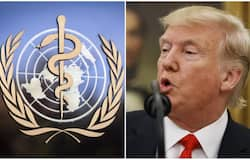 <h1>USA to halt funding to WHO, says President Trump</h1>