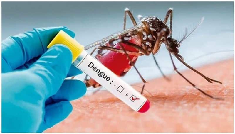 Amid Coronavirus outbreak two dengue case reported in Kolkata