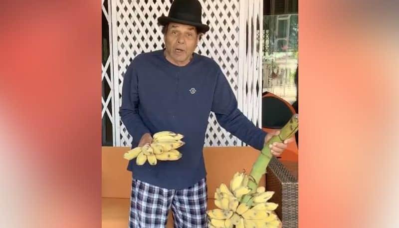 dharmendra deol shared his farms fruits