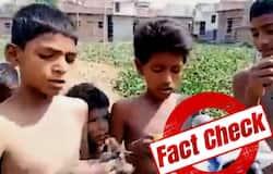 <p>Fact chk bihar boys eating frog</p>