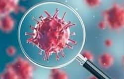 <p>corona virus<br /> &nbsp;</p>
