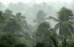 <p>Heavy Rain Kerala</p>