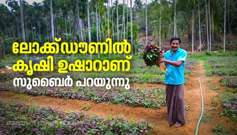 success story agriculture subair