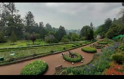 <p>ooty garden&nbsp;</p>