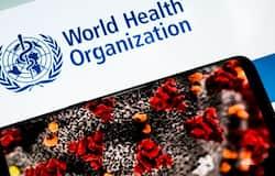 <p>World Health Organization, WHO, Coronavirus</p>