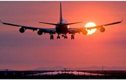 <p>flight</p>