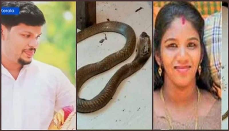 Kerala Uthra murder Police report submitted