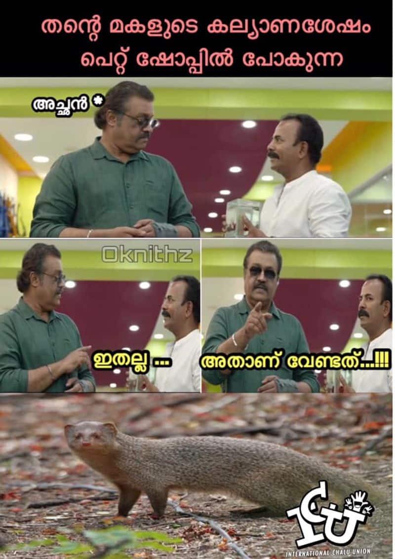 ട്രോള് കടപ്പാട്: Nithin Ok , ഇന്റര്നാഷണല് ചളു യൂണിയന്