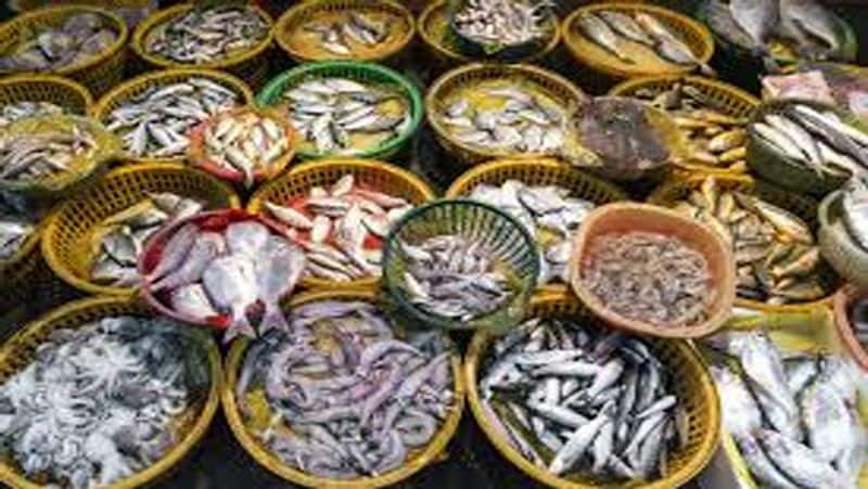 China suspend import of frozen seafood products from six Indian marine export companies ckm
