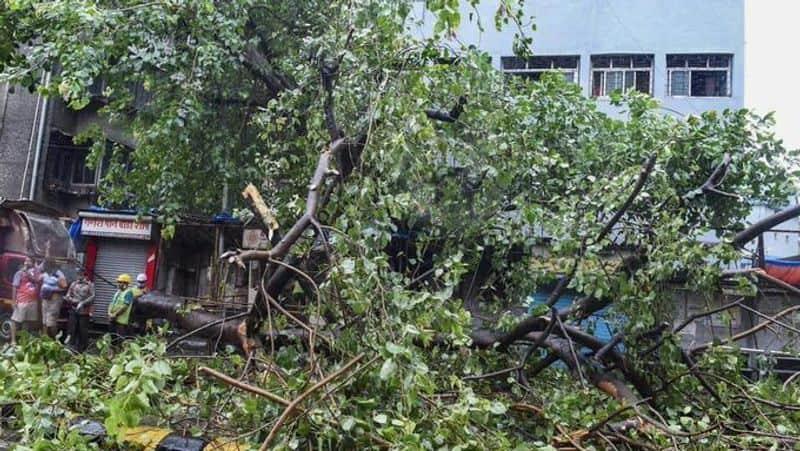 maharastra is terrified bu cyclone nisaga