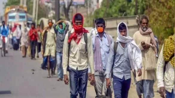 Who Is Responsible For Coronavirus Spread In Maharashtra Raj Thackeray Blames Migrant Workers pod