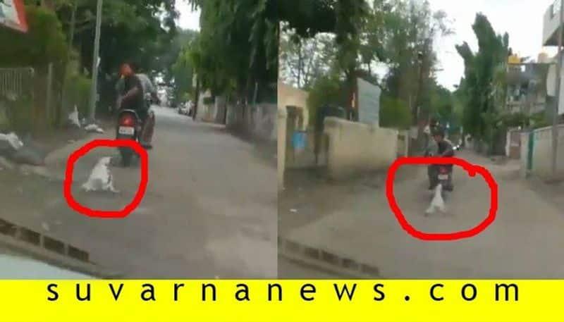 2 booked for dragging dog behind bike in Maharashtra Aurangabad