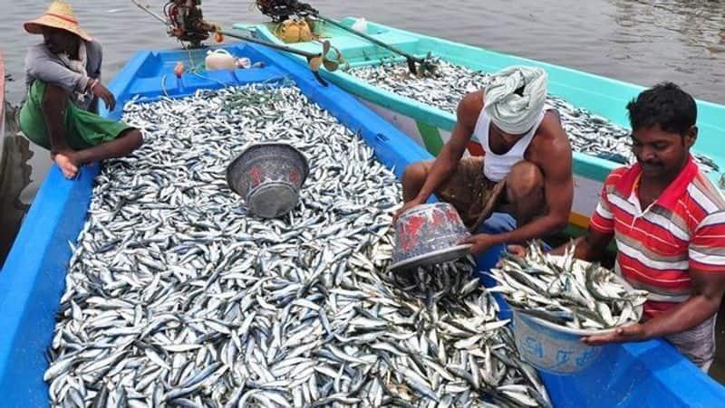 Two month Deep Sea fishing ban along Karnataka coastal snr