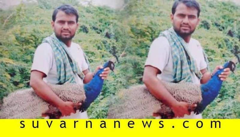 Person Arrested For Made TikTok Video with peacock in Hunagund in Bagalkot
