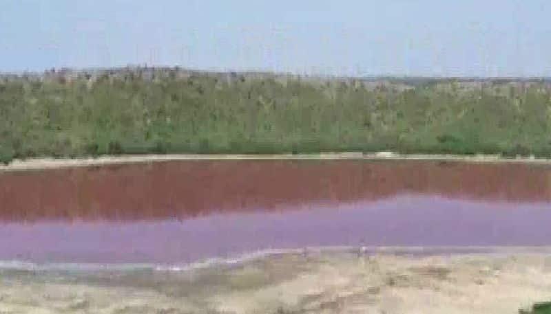 lonar lake in maharashtra turned pink water overnight