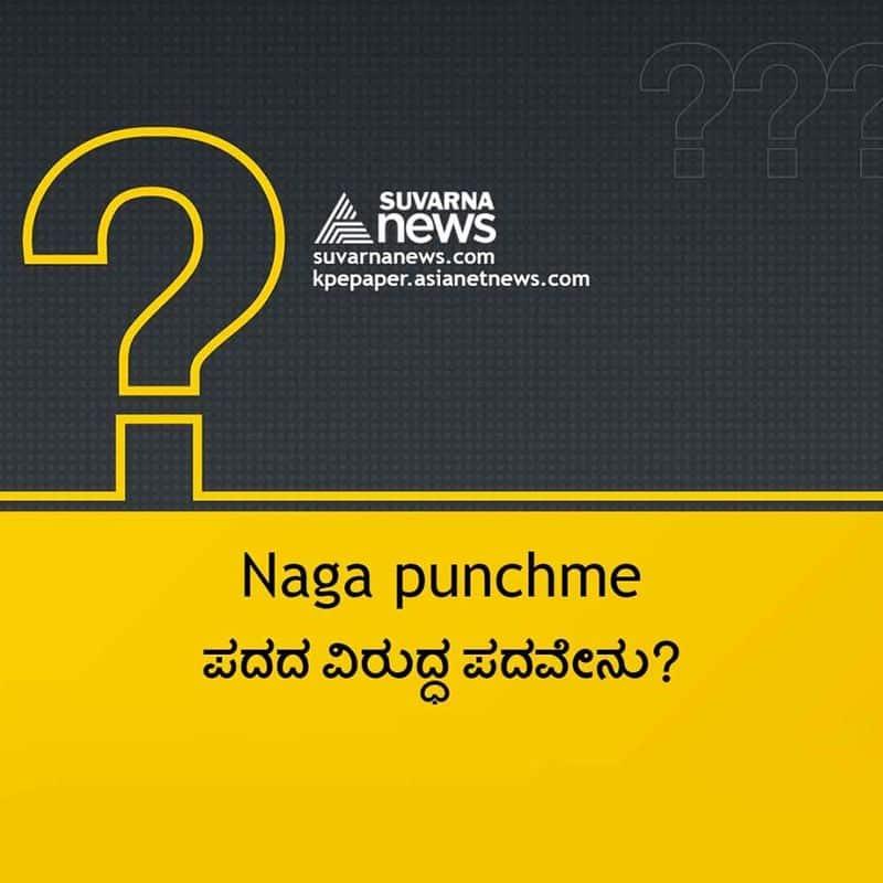 ಉತ್ತರ : ನಾಗ did n't punch me.