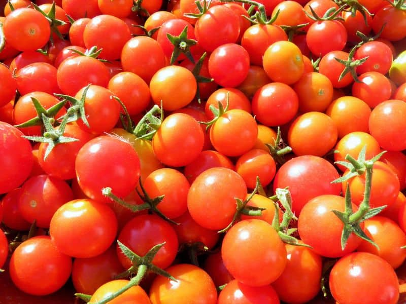 Red tomatoes, hope of relief is less now