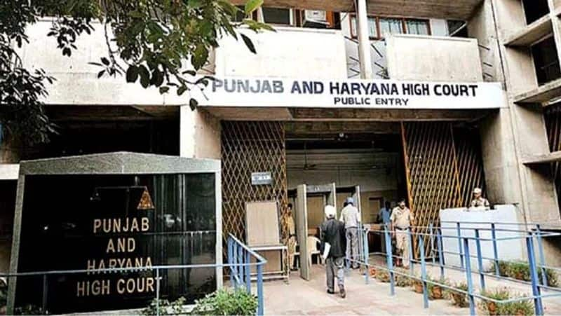 Mother will not bad if she had extramarital affair Punjab and harryana high court ckm