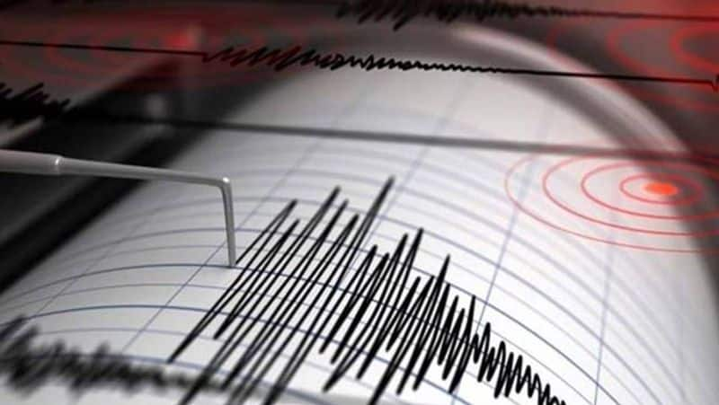 Mild earthquake of 4.7 magnitude on Richter Scale hits Ladakh's Kargil