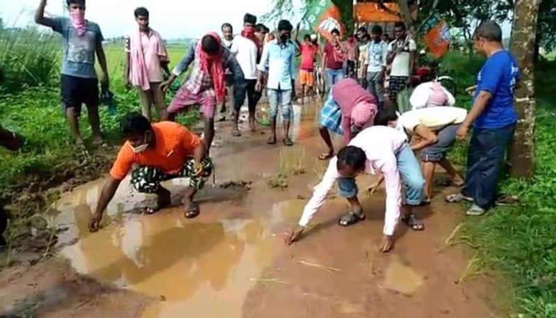 BJP protested bad road condition by implanting paddy seeds BTD