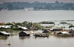 <p>A Flood Report issued by the ASDMA stated that the river Brahmaputra was flowing above danger level in several places in the state, and a total of 26 districts have been affected so far.</p>
