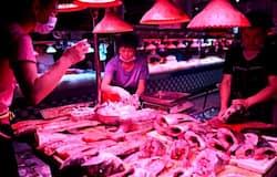 <p>China Fish Market</p>