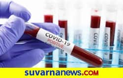 <p>Coronavirus&nbsp;</p>