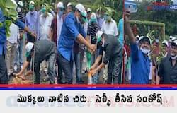<p>Megastar Chiranjeevi Accept Green India Challenge and Plant Saplings&nbsp;<br /> &nbsp;</p>