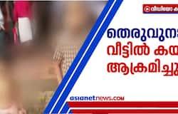 <h3>stary dog attacked siblings of migrant family in ernakulam kakkanad</h3>