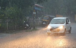 <p>Heavy rains along with gusty wind have been reported over the last two days in coastal and Malnad region of Karnataka.</p>