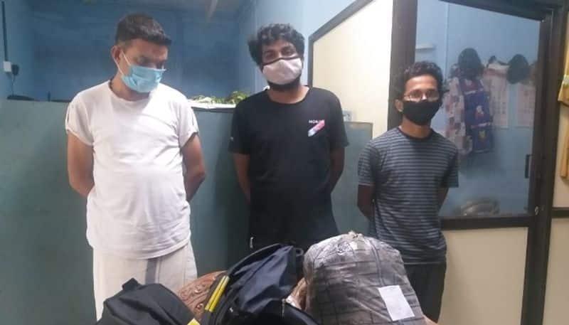 9 kg ganja seized and three arrested in kozhikode