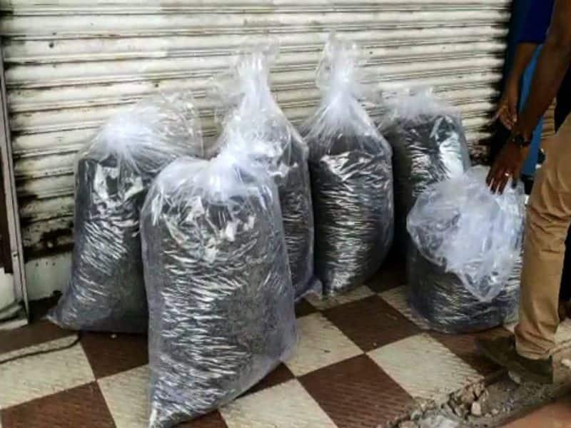 140 kg marijuana seized from chaakkudy